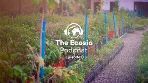 An Ecosia developer visits our reforestation project in Brazil