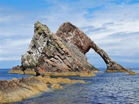 Moray Firth Coastal Day Trip - More in Moray Tours and
