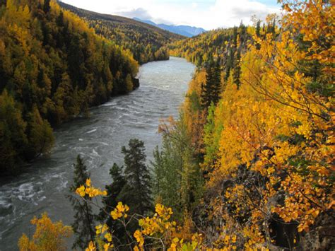 23 Best Places To See Fall Foliage In Alaska For 2016